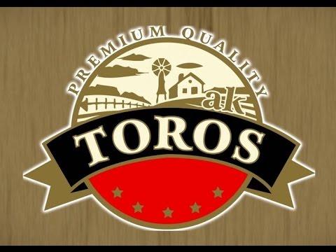 logo_AKDENİZ TOROS